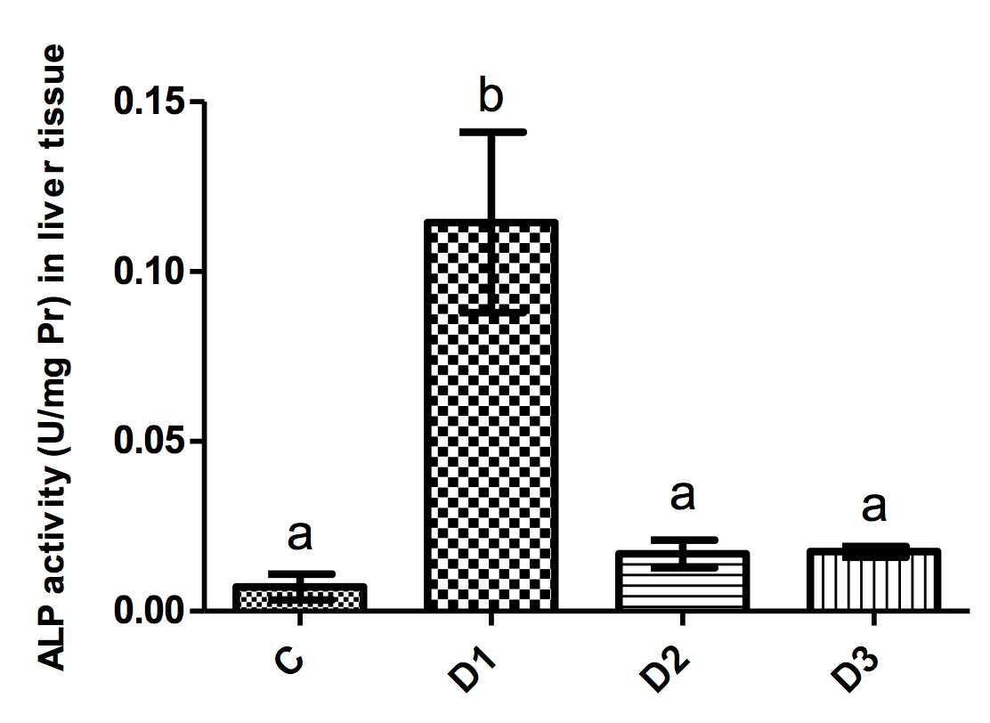 Figure 1 ALP activity (mean±SD) in liver tissues of mice in different groups