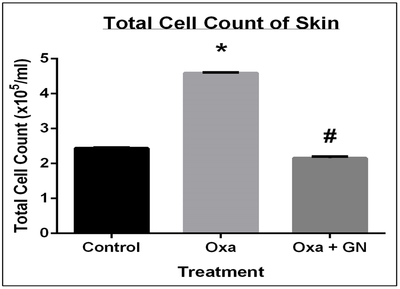 Figure 5 GN treatment successfully reduced the infiltration of cells in the skin