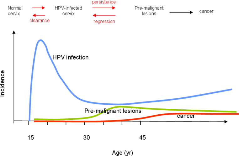 VIRUS AND CERVICAL CANCER: ROLE AND IMPLICATION: A REVIEW